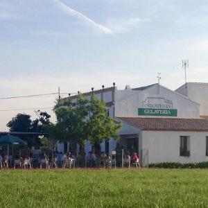 Horchata in Valencia drinken | Wat is de beste horchatería?